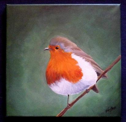 Rouge-Gorge 35x35cm - Acrylique sur toile - Collection Privée
