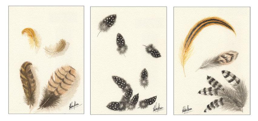 Trio plumes - 50x23.5cm - Aquarelle - Vendu