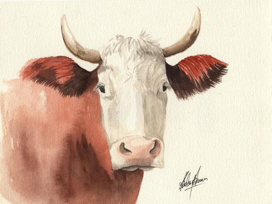 Vache 3 - 18x24cm  - Aquarelle - 15€