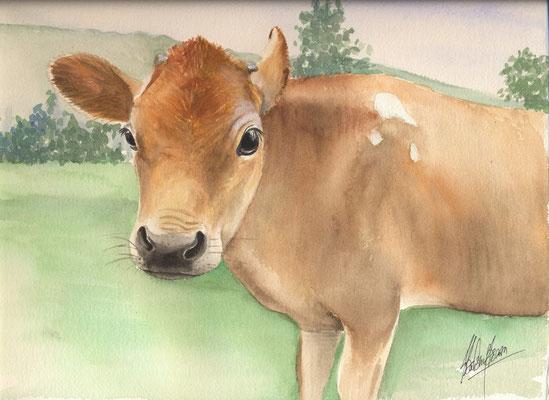 Vache de Guernesey - 21x30cm - Aquarelle - Vendu