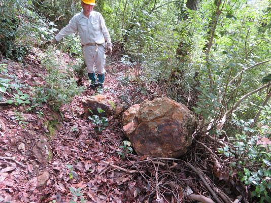 大石(サイズ 70×63×55cm)が落ちそうであったため、安全な場所に移動しました