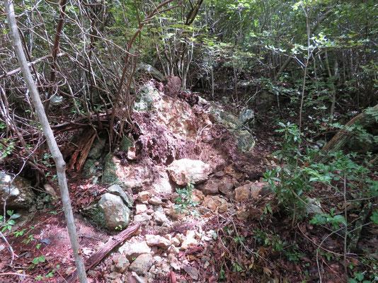 落石の原点場所、浮石が多数ありました
