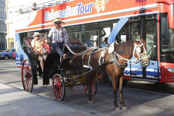 Kutsche oder bus?