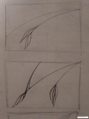 Unopened buds sketch