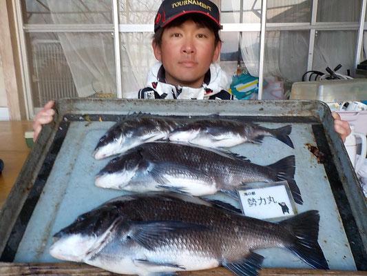 4月4日 磯釣りで渡辺さん 良型チヌ45.5㎝を頭に4匹