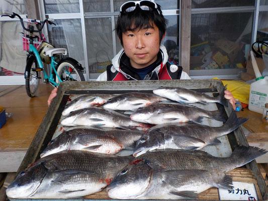 3月5日 磯釣りで河津さん チヌ43㎝を頭に9匹