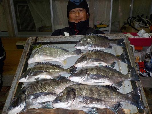 4月2日 磯釣りで野田さん チヌ42.5㎝を頭に7匹