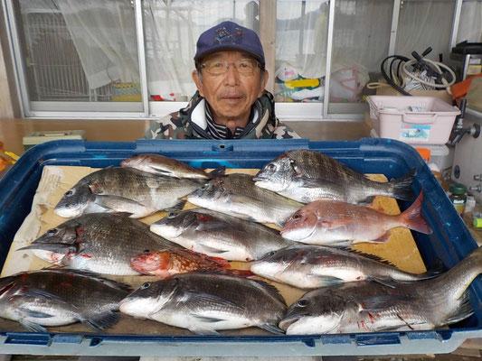 4月2日 ダゴチン釣りで久保さん チヌ、メイタ9匹 タイ1匹