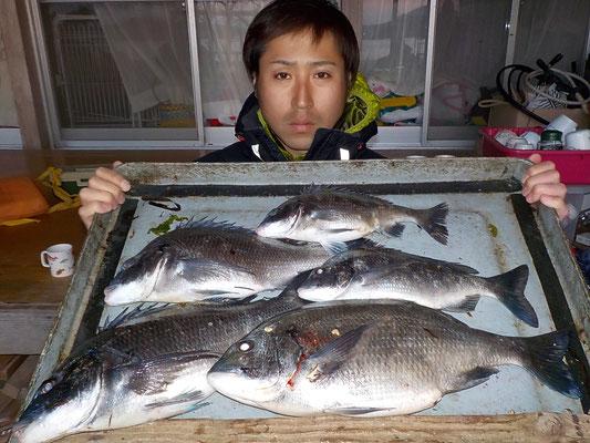 4月2日 磯釣りで上野さん チヌ44㎝を頭に5匹
