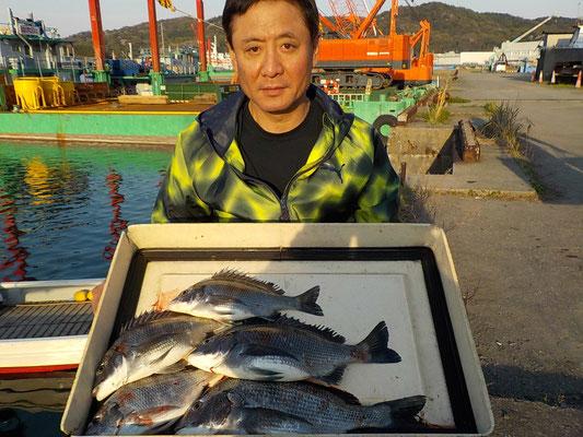4月4日 磯釣りで古江さん チヌ40㎝を頭に5匹