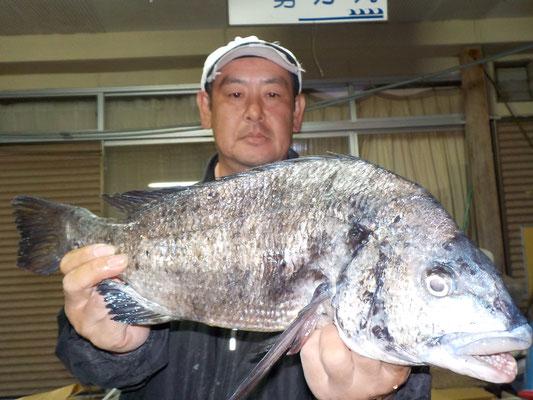 5月13日 磯釣りで池田さん ガバチヌ51cm