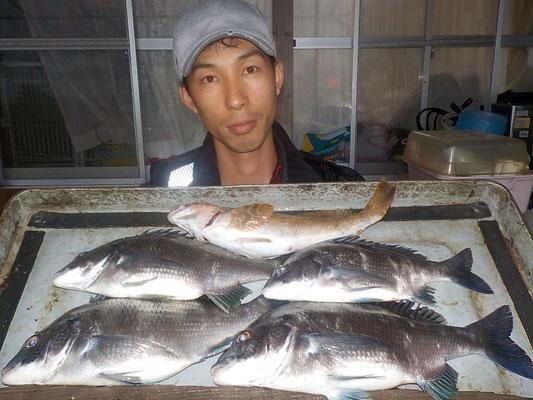 4月7日 磯釣りで北川さん チヌ、メイタ4匹 アイナメ1匹