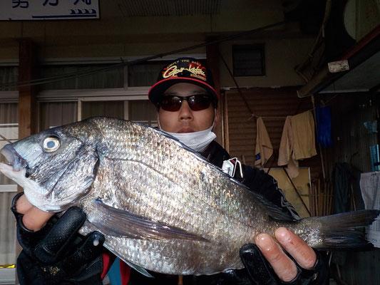 4月2日 磯釣りで田口さん チヌ42㎝を頭に2匹