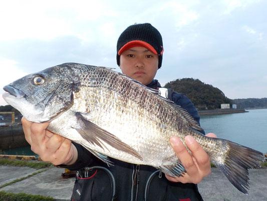 4月1日 磯釣りで小川さん 良型チヌ48㎝