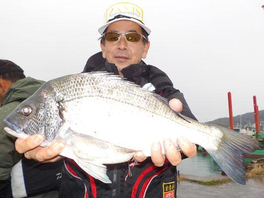 3月5日 磯釣りで向野さん チヌ44㎝を頭に2匹