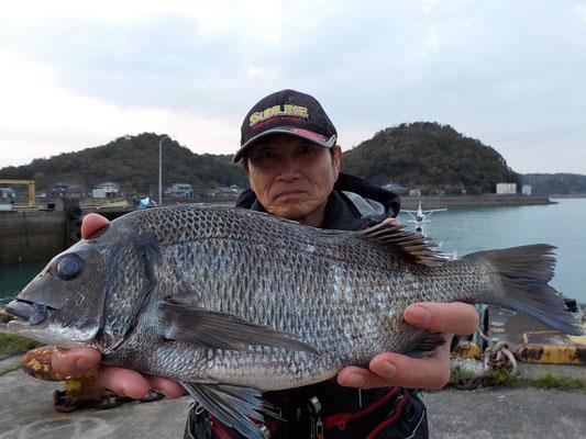 4月1日 磯釣りで小川さん チヌ41.5㎝