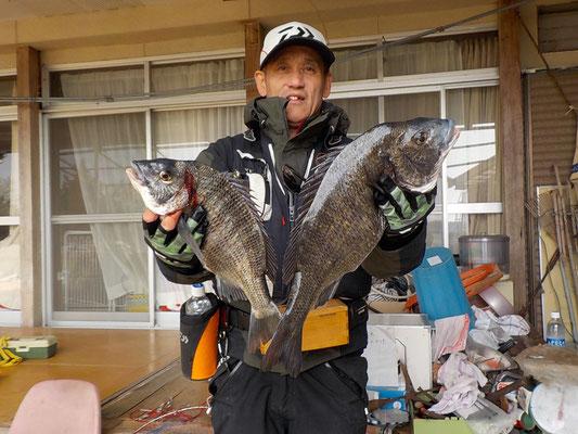 4月2日 磯釣りで多田さん 良型チヌ48.5㎝・40㎝
