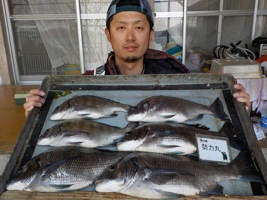 4月3日 磯釣りで高本さん チヌ42㎝を頭に6匹