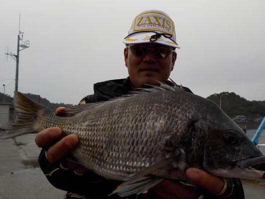3月5日 磯釣りで平林さん チヌ43㎝を頭に4匹