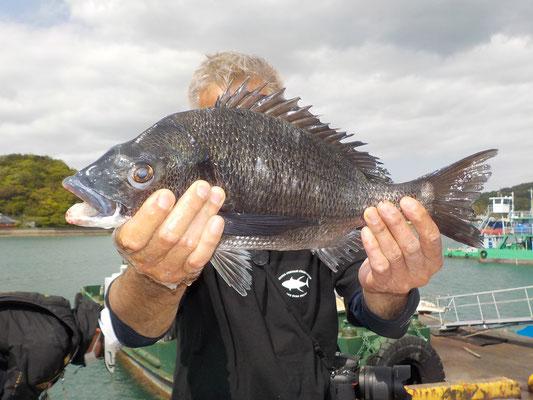 4月18日 磯釣りで矢野さん ガバチヌ50cm