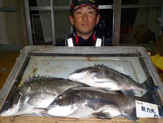 3月3日 磯釣りで渡辺さん チヌ45㎝を頭に3匹