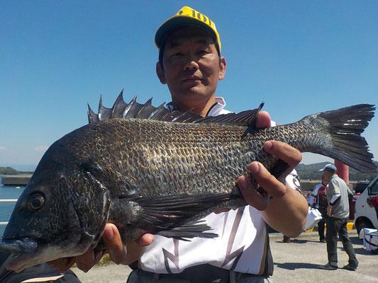 4月23日 磯釣りで村上さん ガバチヌ51㎝