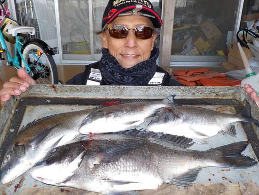 3月6日 磯釣りで友塚さん 良型チヌ45㎝を頭に4匹