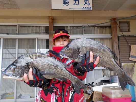 3月1日 磯釣りで福島さん 良型チヌ45㎝前後を2匹