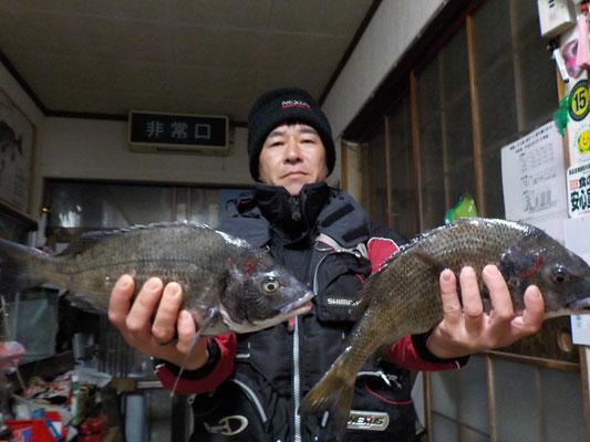 3月5日 磯釣りで川島さん チヌ43㎝を頭に3匹