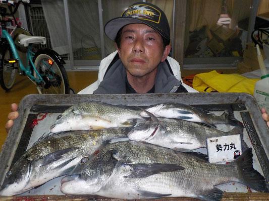 3月5日 磯釣りで宮地さん 良型チヌ46㎝を頭に5匹