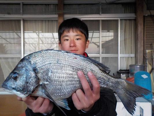 4月2日 磯釣りで村上さん チヌ43㎝