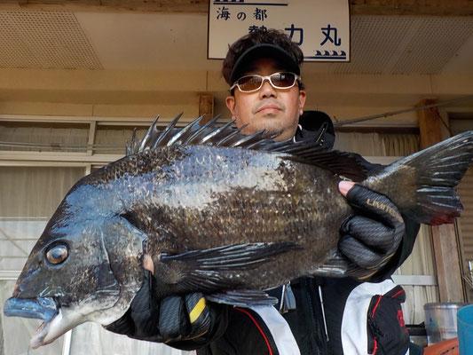 4月2日 磯釣りで有田さん 今季最大53.7㎝・2.8kg