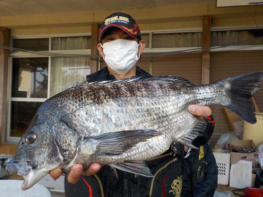 3月24日 磯釣りで宮下さん ガバチン50.5cm