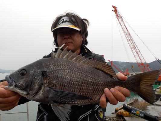 3月5日 磯釣りで湯上さん 良型チヌ46㎝を頭に2匹