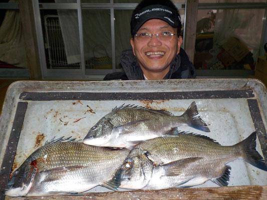 3月1日 磯釣りで村崎さん チヌ36㎝を頭に3匹(リリース3匹)