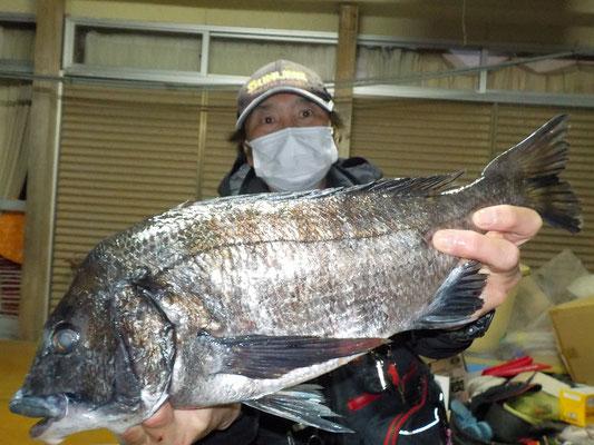 3月13日 磯釣りで小川さん 今年初の50.4cm