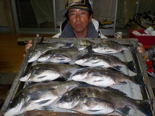 4月2日 磯釣りで宮地さん チヌ43㎝を頭に9匹
