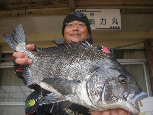 1月4日 野田さん ガバチヌ51.6㎝を頭に5匹