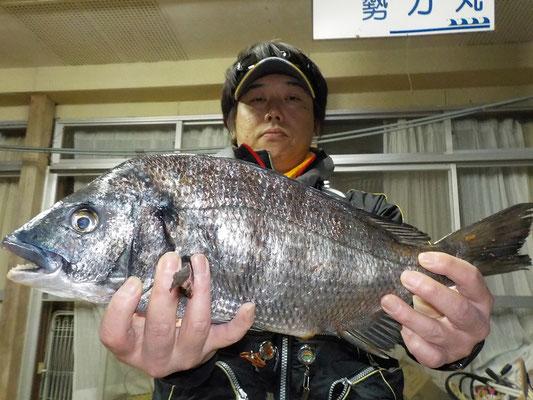 3月3日 磯釣りで山本さん チヌ43㎝