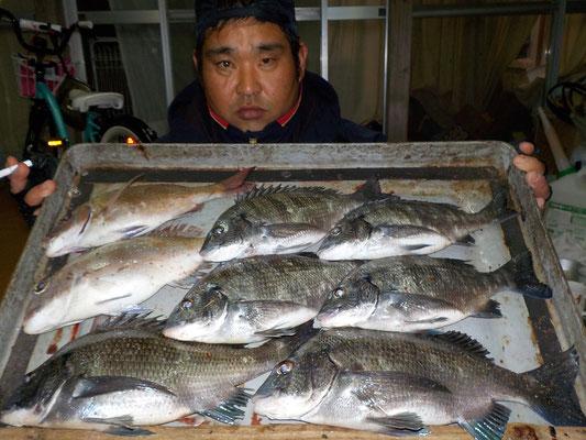 3月6日 磯釣りで渡辺さん チヌ、メイタ7匹 タイ2匹