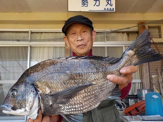 4月3日 フカセ釣りで片岡さん ガバチヌ50.2㎝