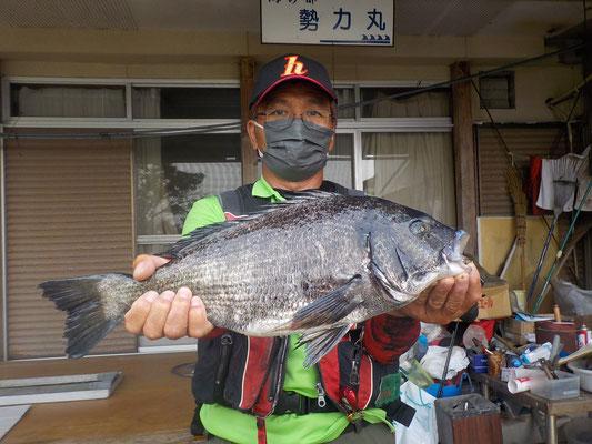 5月8日 ボート釣りで川端さん ガバチヌ50cm