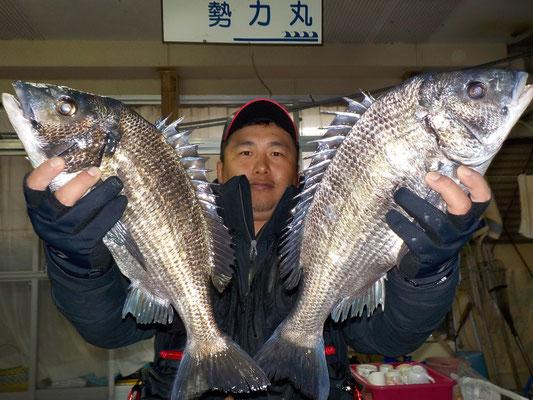 3月8日 磯釣りで川上さん 良型チヌ47㎝・45.5㎝