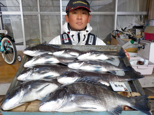 3月7日 磯釣りで渡辺さん 良型チヌ48㎝を頭に9匹