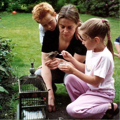 Dr. Birge Herkt erklärt ihrem Sohn Bauke-Fabian und einer interessierten Nachbarin, wie man Jungspatzen füttert