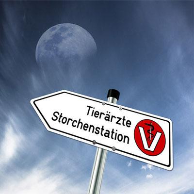 """Schild zur Tierarztpraxis von Dr. Birge Herkt an der Straße """"Zum Flugplatz"""""""