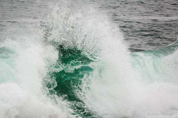 Welle imAtlantik