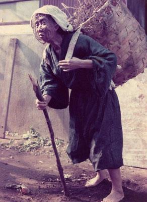 能登の焚き木拾いの老婆