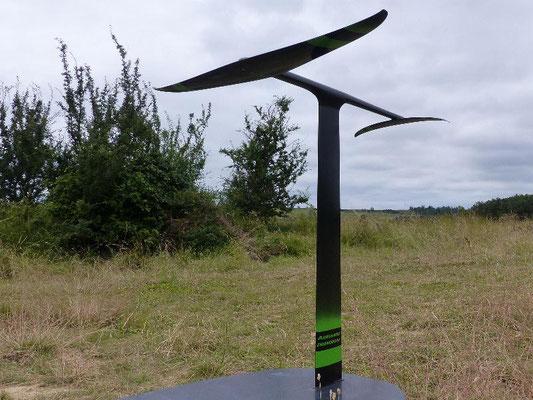 winfoil aeromod v2 sans la mini-derive noir et vert dans l'herbe sur fond de ciel