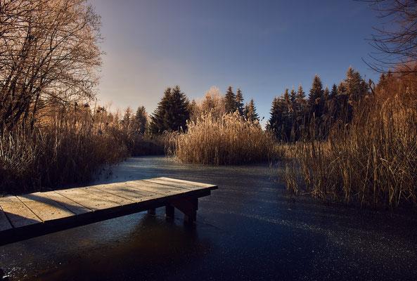 Teich auf dem Hongar